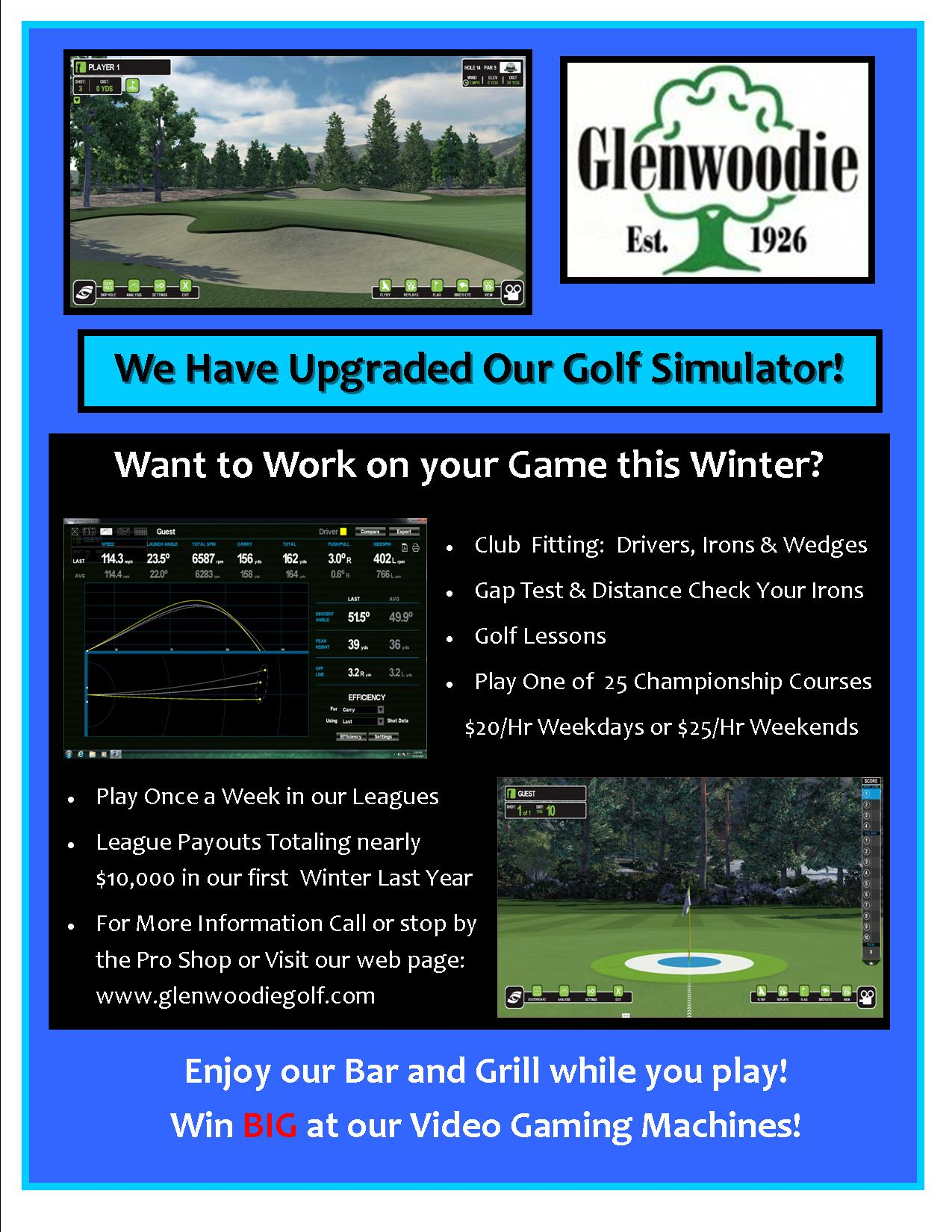 Simulator Flyer Promo 2015